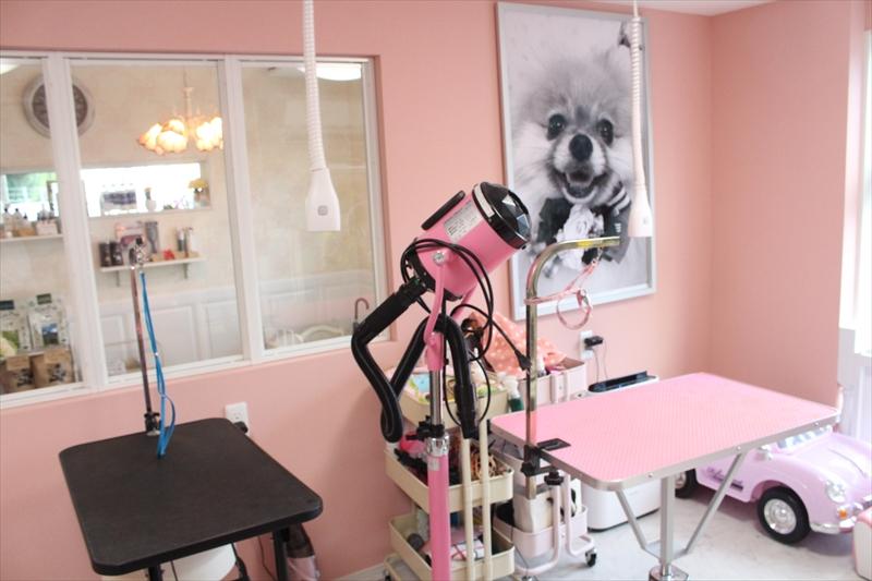 伊丹市のトリミングペットサロン Dog Salon nico (ドックサロンニコ)